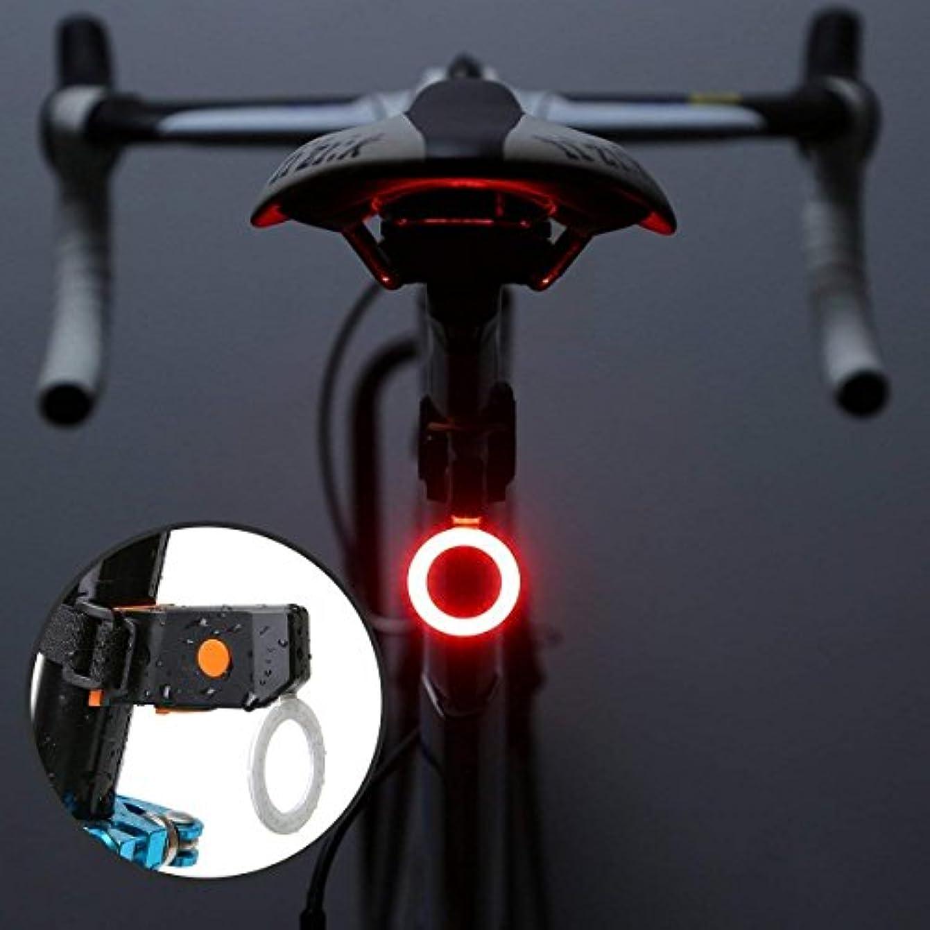 ベンチ講師バスケットボールROOFTOPS 自転車 テールライトUSB充電式 防水 高輝度led テールライト 自転車用 セーフティーライト ライト五つ点灯モード 軽量 ロードバイク マウンテンバイク 小型自転車 リアライト テールランプ (01)