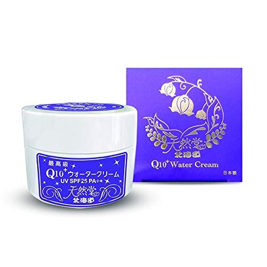 ショッピングセンター不安定乳製品Q10ウォータークリーム 80g / 北海道天然堂