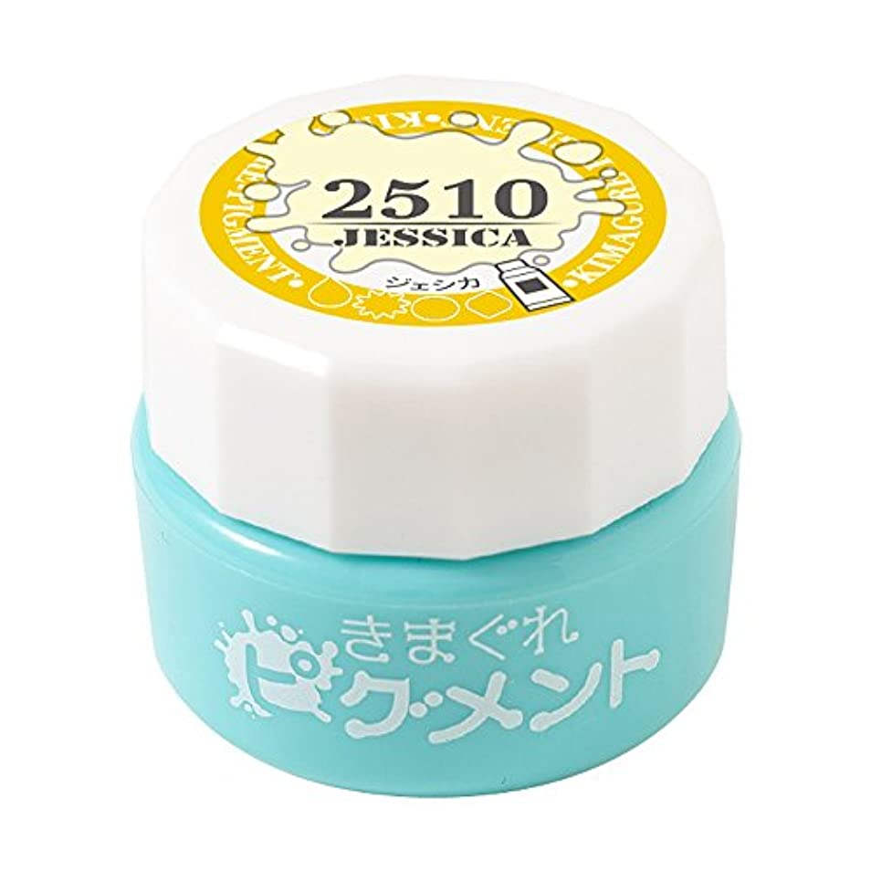 苦行特別に鼻Bettygel きまぐれピグメント ジェシカ QYJ-2510 4g UV/LED対応