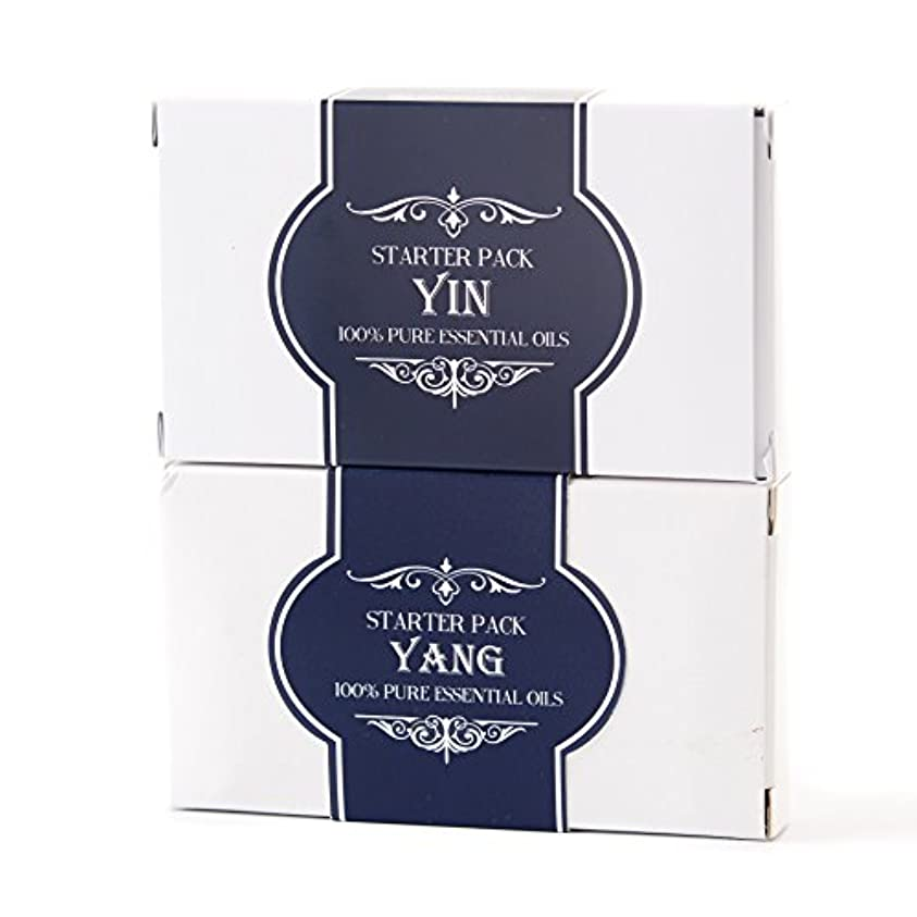 平方マティスサスペンドEssential Oils Twin Pack - Yin and Yang