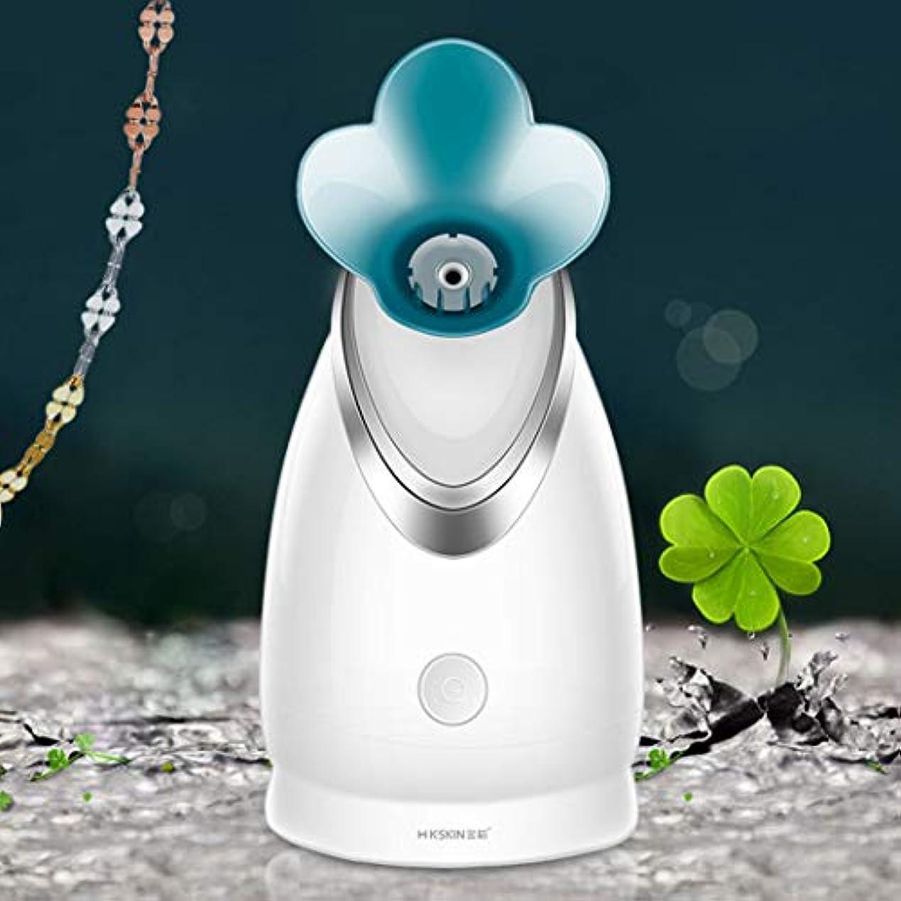 歯科のカポック化学薬品LVESHOP 蒸気面イオンホット蒸し顔機家庭用噴霧器美容機器水道メーター加湿器 (色 : T2)
