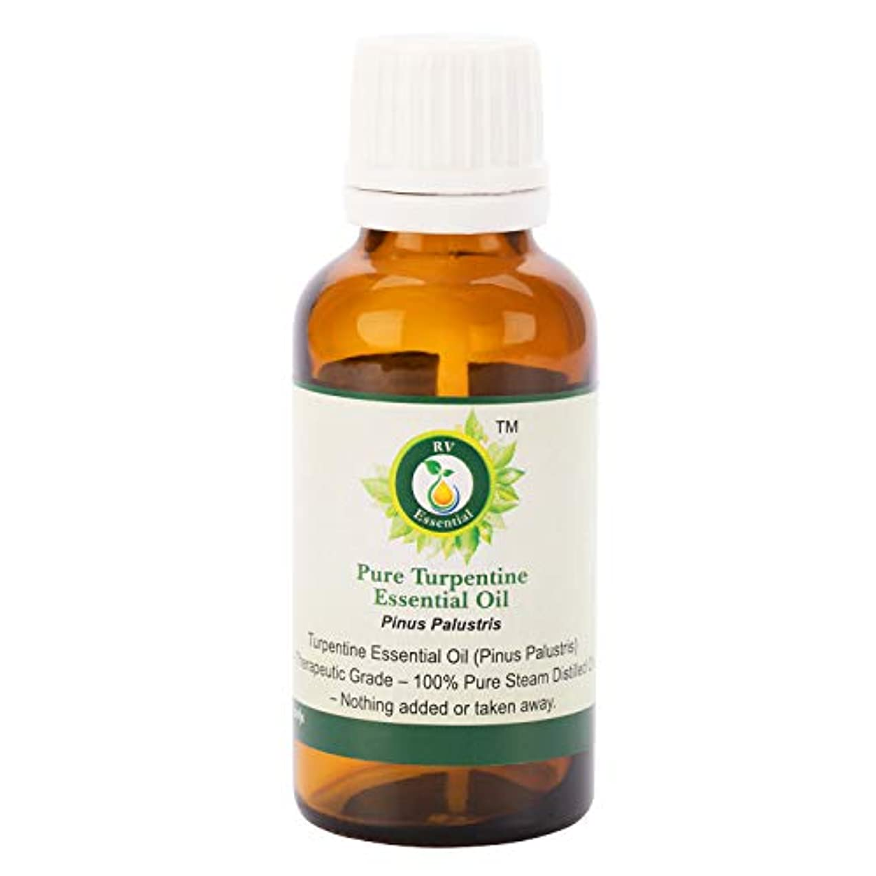 くさび受け継ぐ紛争純粋なターペンタイン精油30ml (1.01oz)- Pinus Palustris (100%純粋&天然スチームDistilled) Pure Turpentine Essential Oil