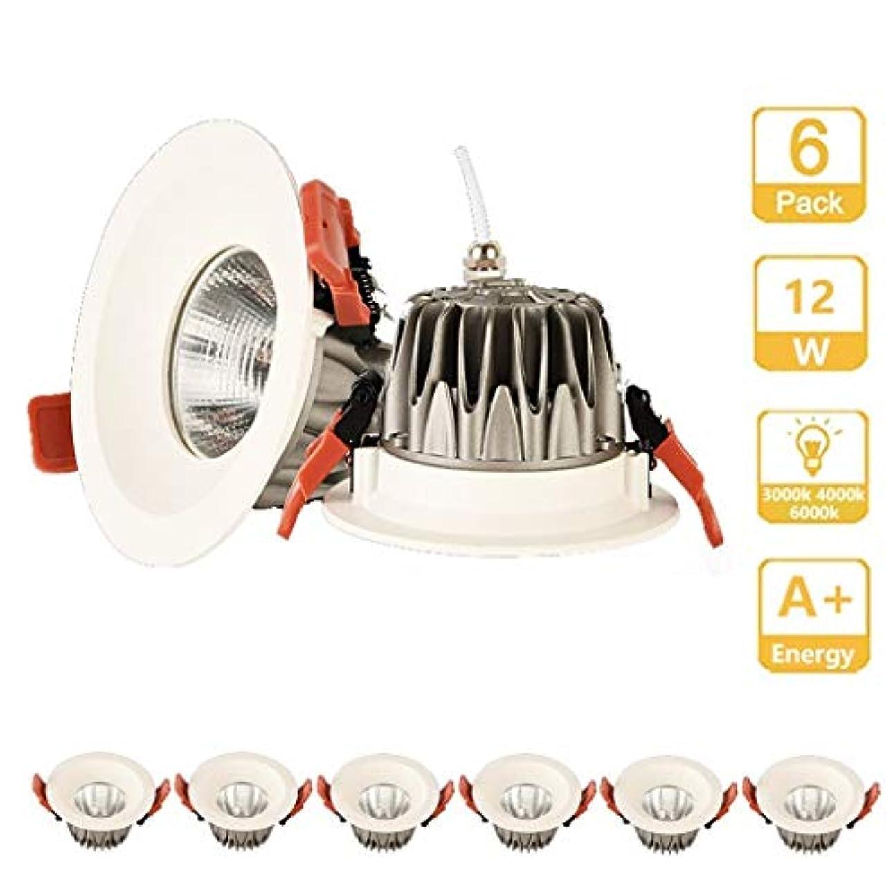 乱闘摘む湿ったLEDシーリング埋め込みダウンライトスポットライト、埋め込みjboxというフィクスチャ、リビングルームベッドルームキッチンシンプルなレトロフィット設置用LEDダウンライト - エネルギースター (Color : Neutral light, Size : 12W)
