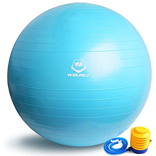 WinLine バランスボール ヨガボール ダイエット エクササイズ フィットネス 65cm ポンプ付き (ブルー)