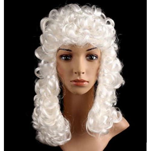 GLOBAL BOX 宮廷 中世 ヨーロッパ 貴族風 かつら 男性 白髪 ウィッグ カツラ ロン毛 コスプレ パーティー等 音楽家 芸術家