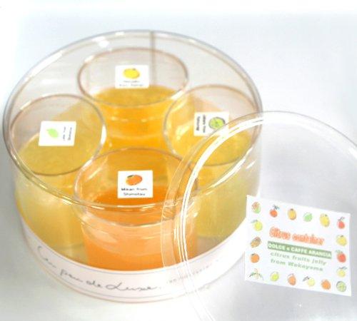 【冷凍】CITRUS CONTAINER和歌山産旬の柑橘フルーツのゼリー4種詰め合わせギフト