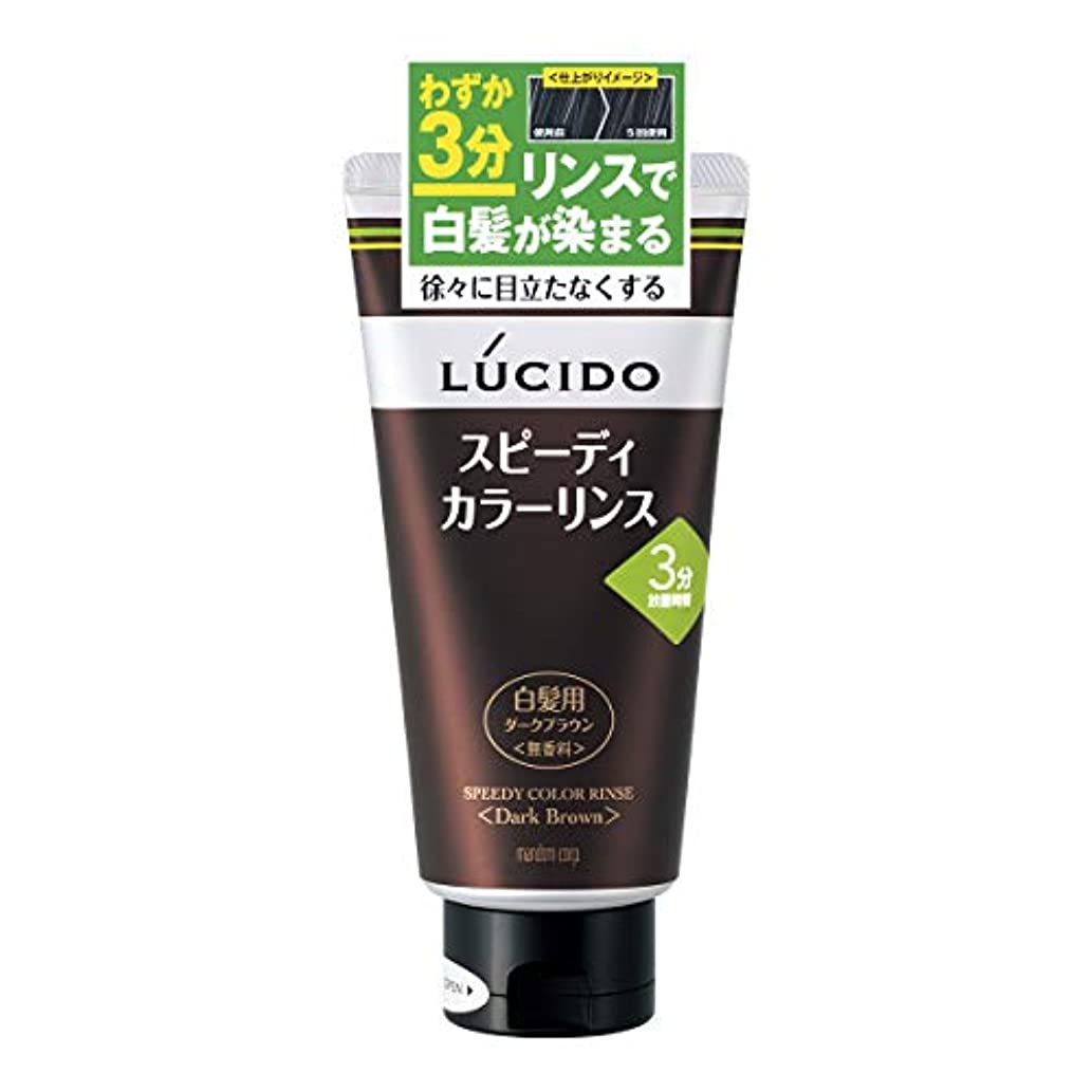 インフラトーン滴下LUCIDO(ルシード) スピーディカラーリンス ダークブラウン 160g リンスで簡単白髪染め