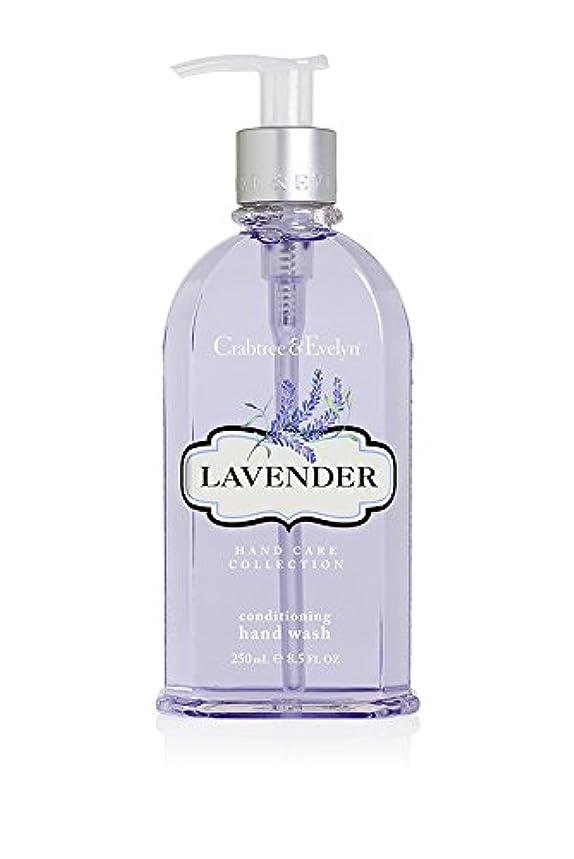 からに変化するトレイ猟犬Lavender Conditioning Hand Wash