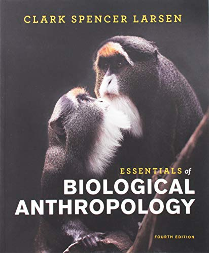 Download Essentials of Biological Anthropology 039366743X