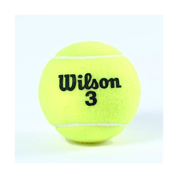 【Amazon限定モデル】Wilson(ウイル...の紹介画像7