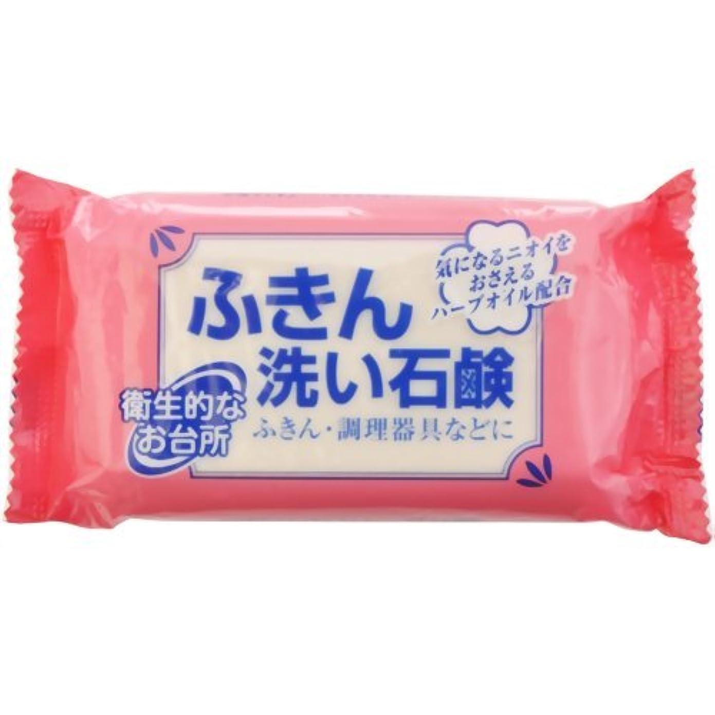 懐疑論不快縁ふきん洗い石鹸 135g