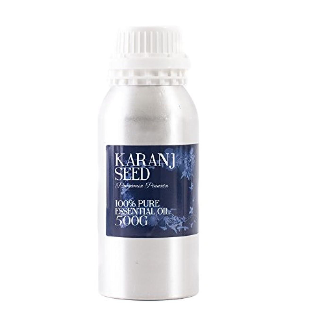手綱交差点不潔Mystic Moments   Karanj Seed Essential Oil - 500g - 100% Pure