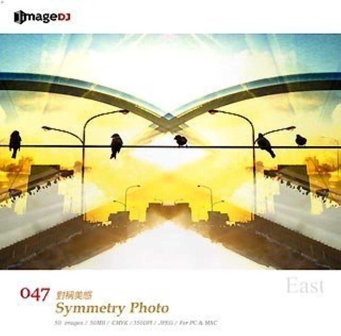 ハイランドピカソ同化するEAST vol.47 対称写真 Symmetry Photo