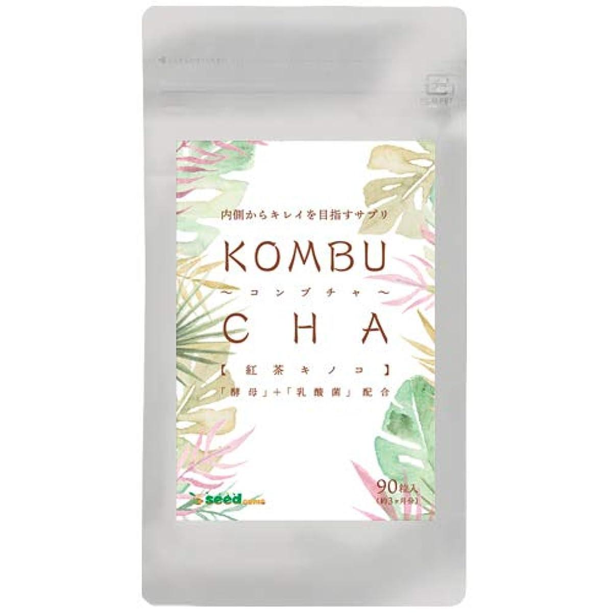 実行可能フレームワーク子羊コンブチャ (約3ケ月分/90粒) 紅茶キノコ 酵母と乳酸菌配合