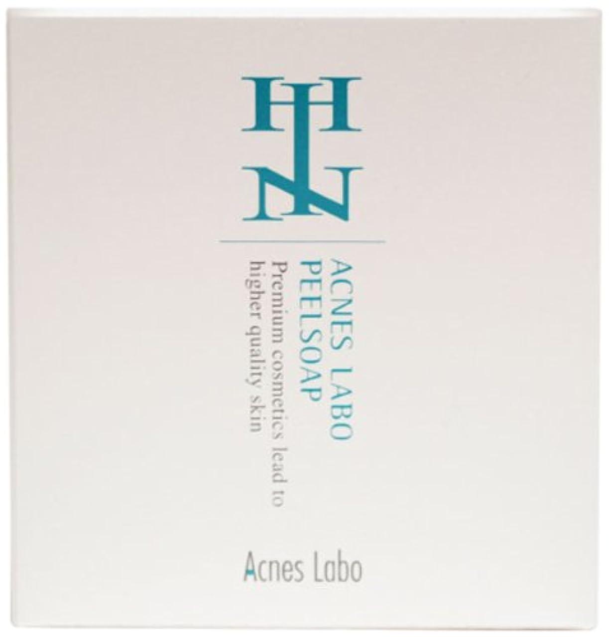 ホイスト寛容な建設HINアクネスラボ ピールソープM