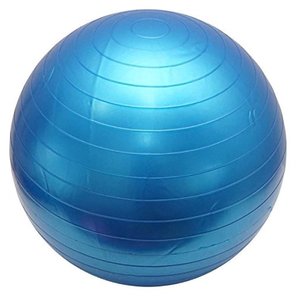 従う責める歌手バランスボール 55cm アンチバースト ポンプ付き ブルー ヨガボール ノンバースト ダイエット
