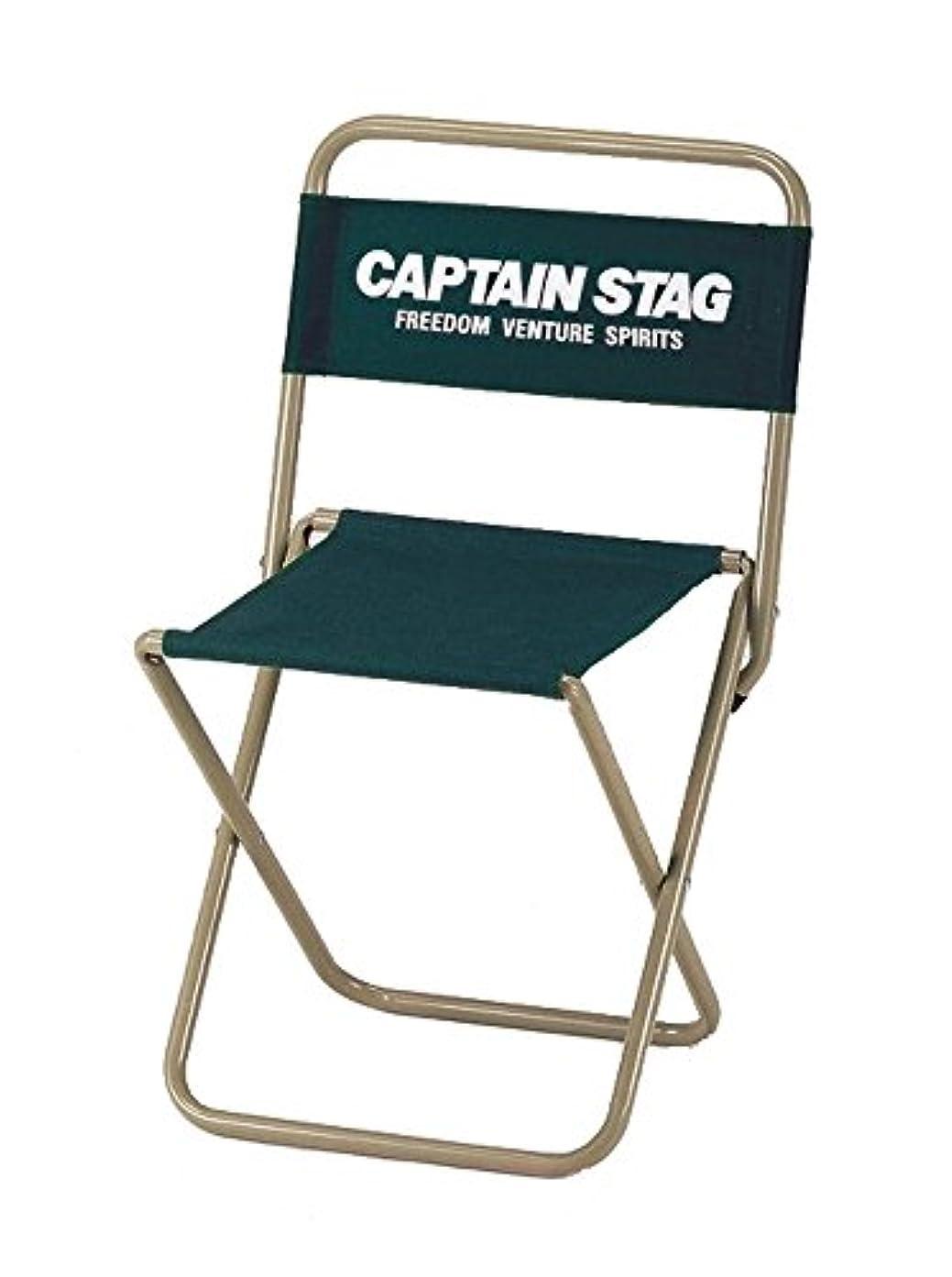 レベル航空買収キャプテンスタッグ(CAPTAIN STAG) チェア CS レジャー チェア 大 type2 グリーン UC-1598