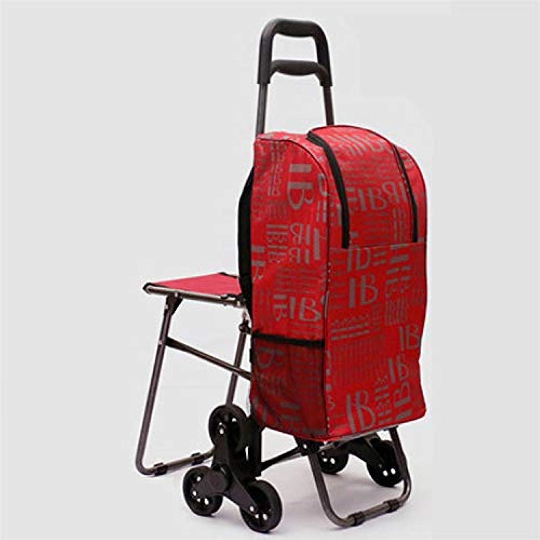 アカデミックシステムアウトドアJTWJ 高齢者のためのホームショッピングカートは、野菜を買うために建物を登るために小さなカートの牽引カートを取ることができますハンドクランクカー折り畳み式のポータブルカー