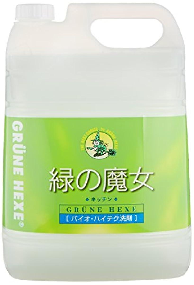 チャンバーウサギゆるい【大容量】 緑の魔女 キッチン(食器用洗剤) 5L