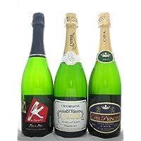 特選スパークリング3本セット シリーズA【Sparkling】【スパークリングワイン・辛口・750ml×3】