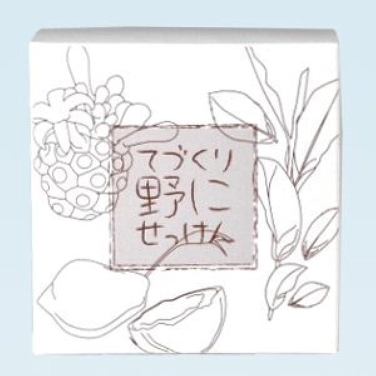 解釈胴体スリム緑茶 ノニ石鹸 てづくり野にせっけん(115g)