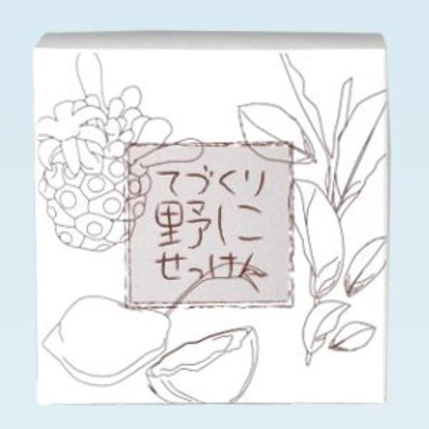 エレクトロニックアニメーションペア緑茶 ノニ石鹸 てづくり野にせっけん(115g)