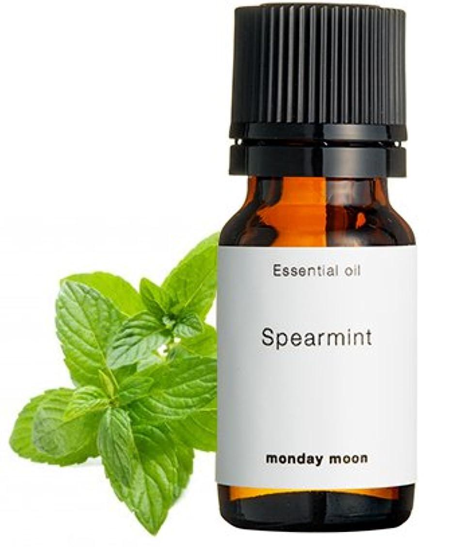 条件付き魂吸い込むスペアミント精油/10ml