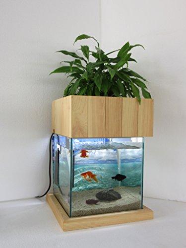 せせらぎ室内ビオトープ 25cm型水槽セット 照明木製枠台付き