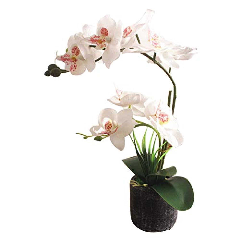 ruisuered装飾植物結婚式人工観葉植物人工胡蝶蘭の花偽植物盆栽ホームオフィスショップカフェの装飾 - ホワイト