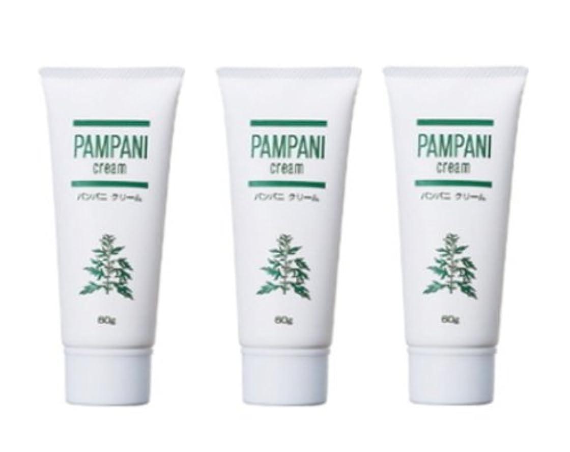 貢献する基準議論するパンパニ(PAMPANI) クリーム 60g×3本組