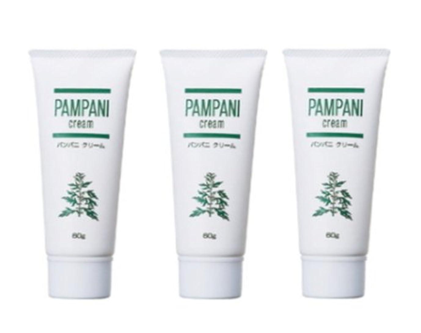 パンパニ(PAMPANI) クリーム 60g×3本組