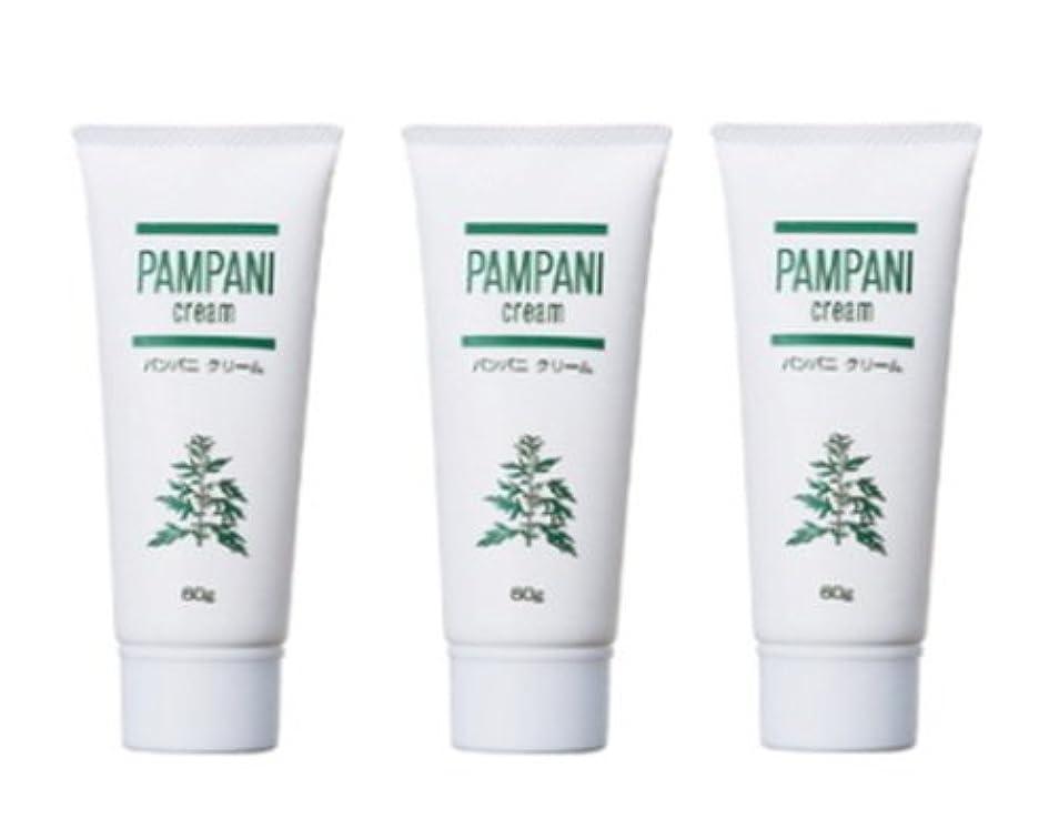 シリーズ想定成長するパンパニ(PAMPANI) クリーム 60g×3本組