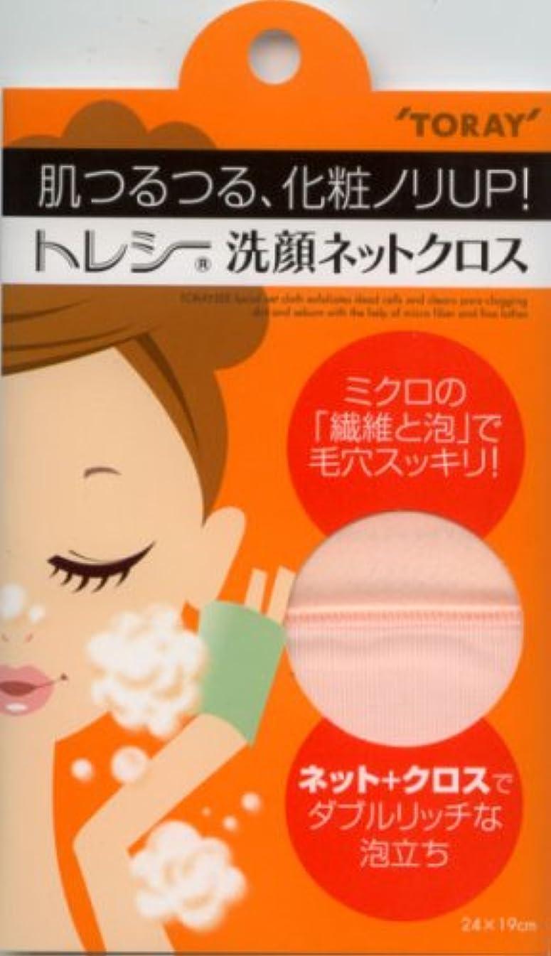 透明に屋内ループトレシー 洗顔ネットクロス ピンク