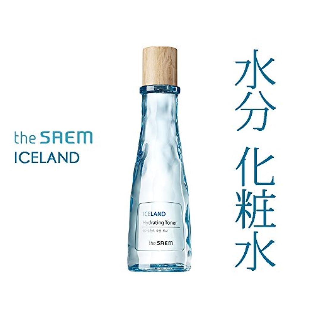 軽減前兆蛇行THE SAEM ザセム アイスランド 水分 トナー Iceland Hydrating Toner 160ml 【 化粧水 水分補給 潤い 高保湿 韓国コスメ 】