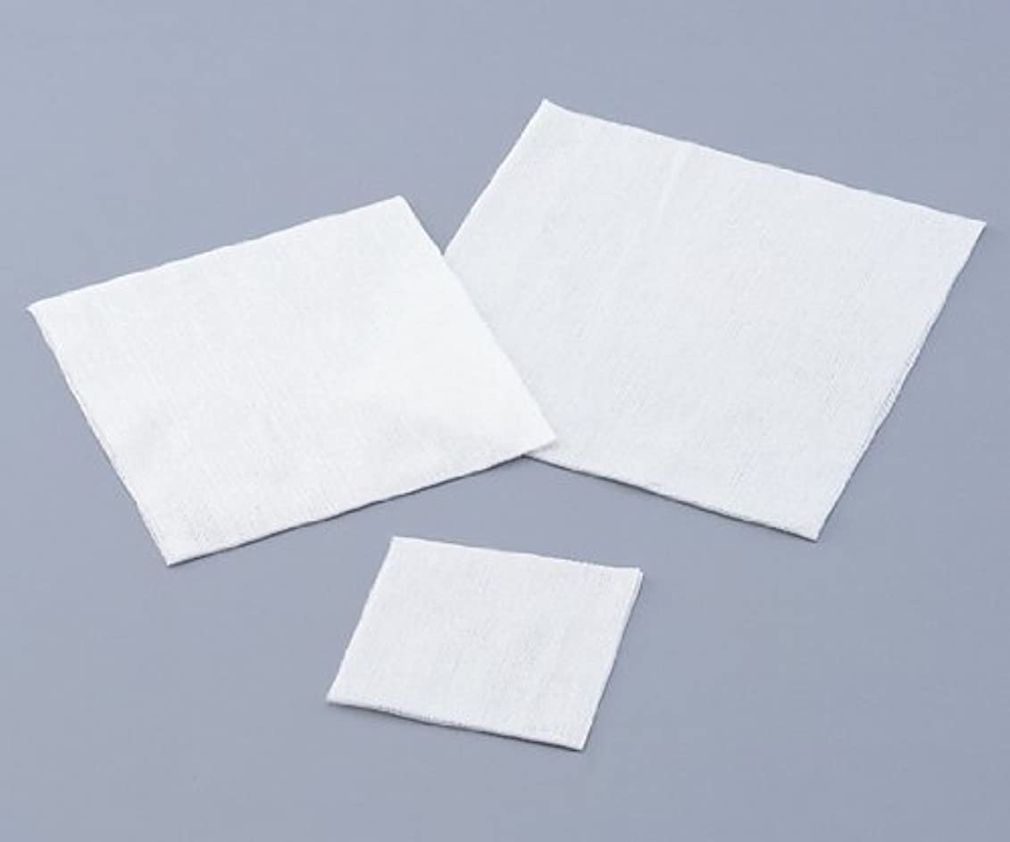 文房具独裁者高い不織布ワイパー 1包(200枚入)