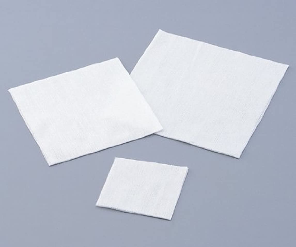 コードレス出費肺炎不織布ワイパー 1包(200枚入)
