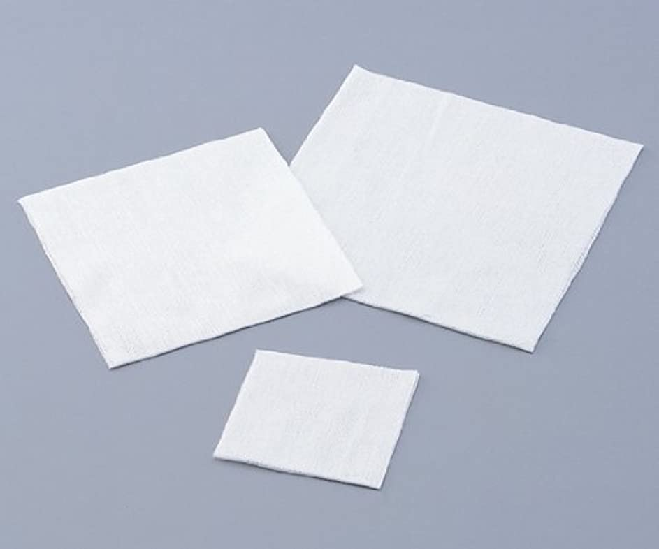 震え借りる練習不織布ワイパー 1包(200枚入)