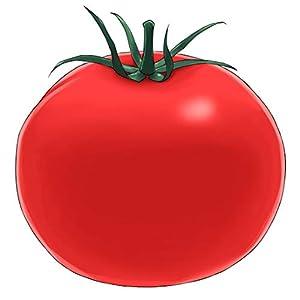 トマトが赤くなれば医者が青くなる話
