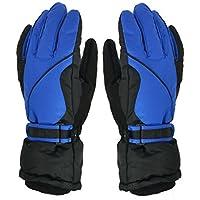 (Baoxinjp) メンズグローブ ファッション手袋 スキーグローブ 保温 防寒 スノーグローブ スポーツ バイク 手袋 ブルー