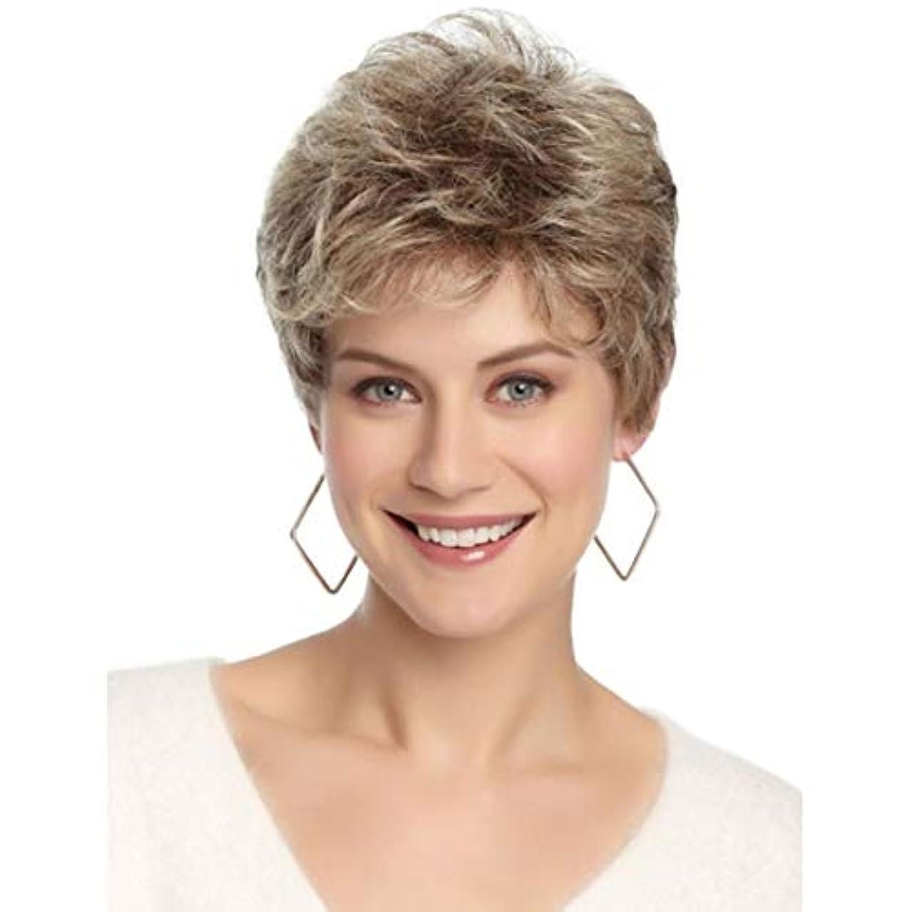 キャロラインスパイラル精緻化YOUQIU 女性の耐熱ウィッグナチュラルヘアのかつらのためのブラウン12
