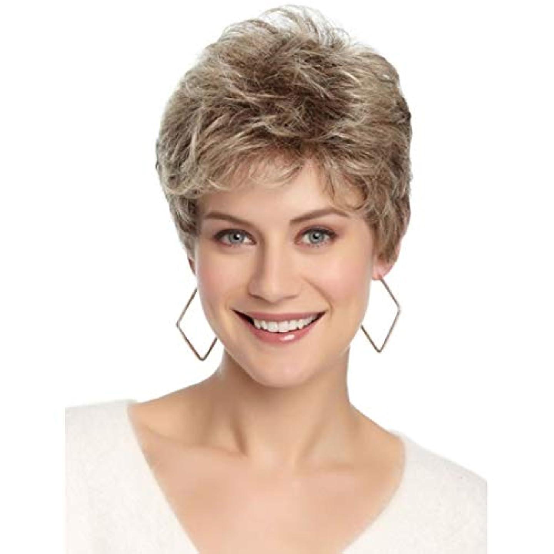異なるインスタント達成するYOUQIU 女性の耐熱ウィッグナチュラルヘアのかつらのためのブラウン12