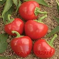 マルチカラー:セール!200スコッチボンネットペッパー種子観賞用のペッパー野菜の種子、。年齢