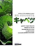 キャベツ―食育 野菜をそだてる (食育野菜をそだてる)