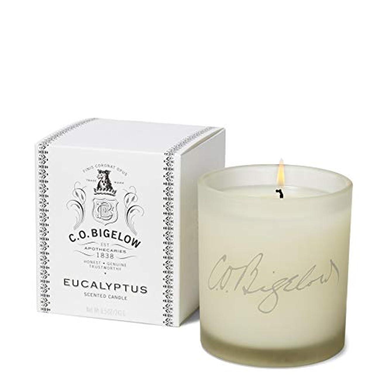 コロニー滝化石[C.O. Bigelow] C.O.ビゲローユーカリの香りのキャンドル - C.O. Bigelow Eucalyptus Scented Candle [並行輸入品]