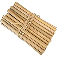 天然素材(再利用可能/生分解性)エコノミーバンブー(竹)ストロー20本セット
