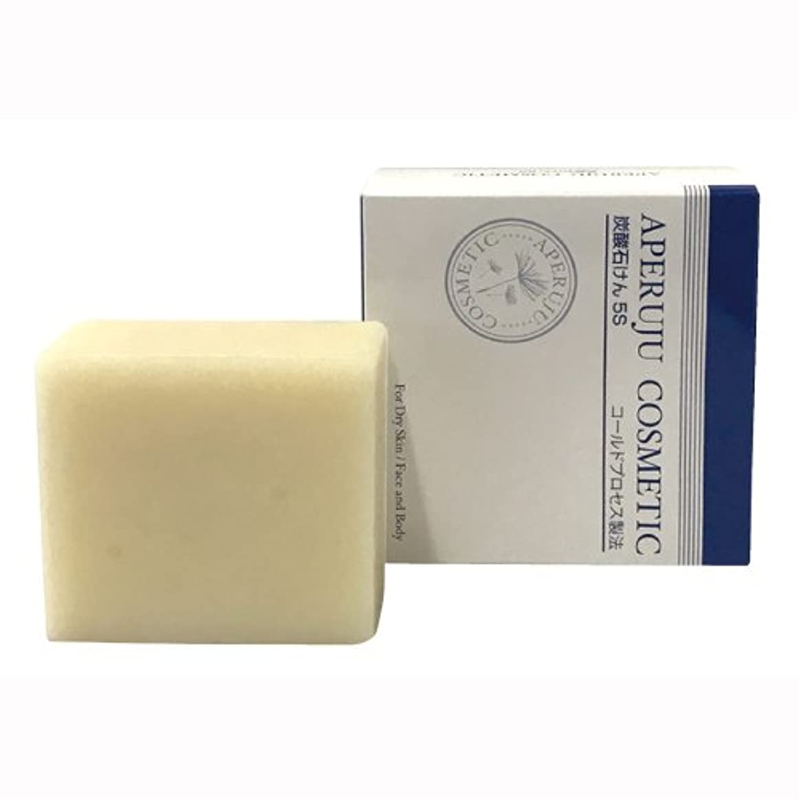 バランス洗剤不利益アペルージュ 炭酸石けん5S 100g
