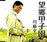 望郷甲子園 [Single, Maxi] / 川藤幸三 (演奏); 小金井一正, 杉村俊博 (その他) (CD - 2008)