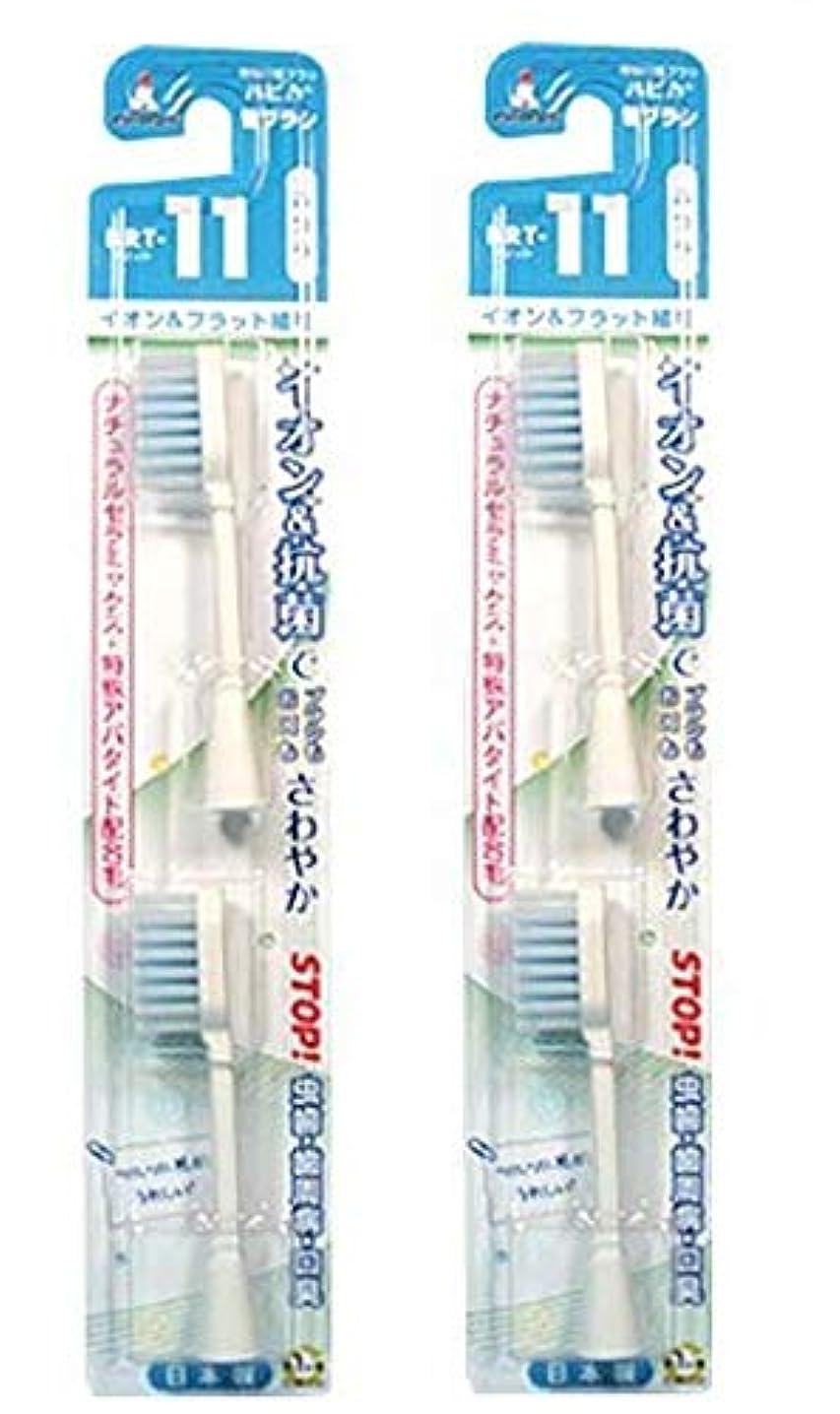 カード蒸競争電動歯ブラシ ハピカ専用替ブラシふつう フラット マイナスイオン2本入(BRT-11) 2個セット