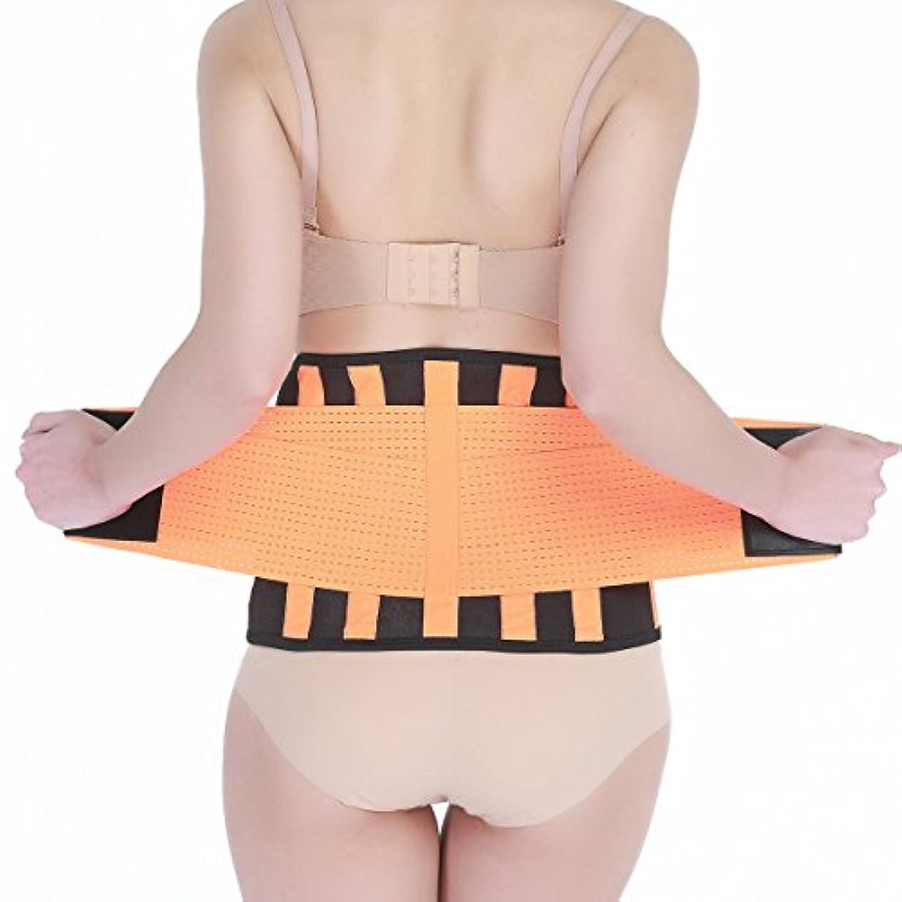 に対応パラダイストン腰サポーター 腰痛コルセット 二重ベルト 加圧 伸縮 姿勢矯正でインナーマッスルを鍛えダイエット 男女兼用 (L=長さ約107cm(81-92 cm))