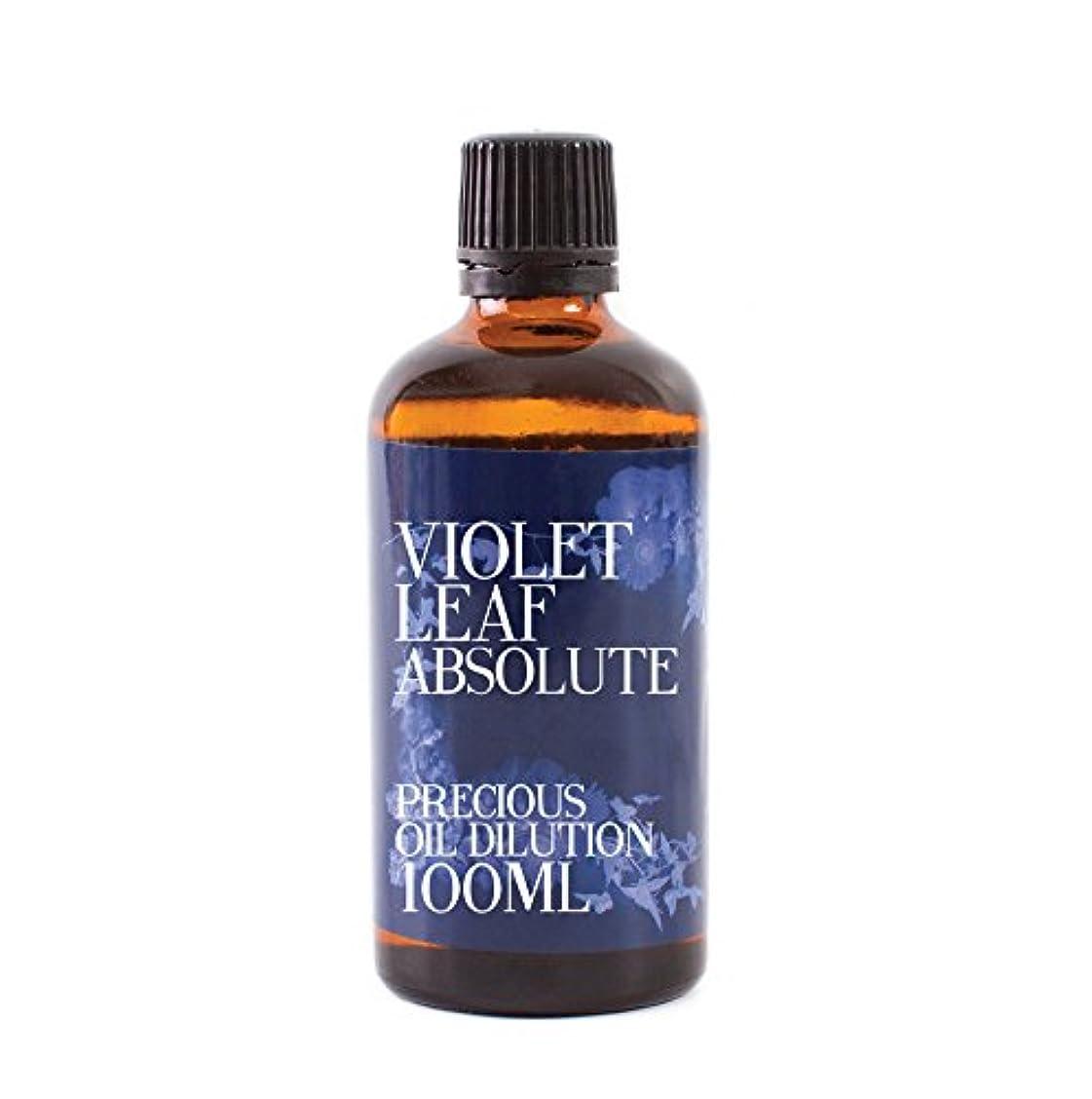 省エンティティ着服Violet Leaf Absolute Oil Dilution - 100ml - 3% Jojoba Blend
